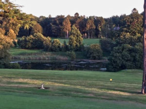 2019-09-17 Northampton Golf Club Course Luminar